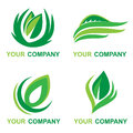 Leaf Logo with your company name Royalty Free Stock Photo