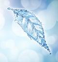 Leaf made of water splash