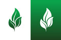Leaf Pair Icons Vectors Illustrations on Both Solid and Reversed B Royalty Free Stock Photo