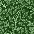 Leaf pattern Stock Images
