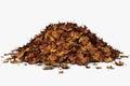Leaf Pile Royalty Free Stock Photo