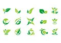 Picture : Leaf, plant, logo, ecology, people, wellness, green, leaves, nature symbol icon set of vector designs   idea