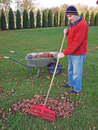 Leaf raking Royalty Free Stock Photo