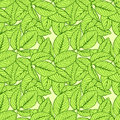 Leaf seamless pattern Royalty Free Stock Photos