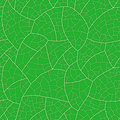 Leaf (seamless vector wallpaper) Stock Photos