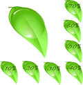 Leaf shaped price tags for spring season discounts isolated on a white background Stock Photos