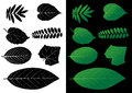 Leaf silhouette vector green illustrations Stock Photography