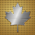 Leaf of steel canadian maple on gold background vector illustration Royalty Free Stock Photography