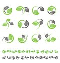 Leaf symbols, icons and signs collection Stock Photo