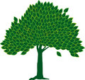 Leaf tree (vector) Royalty Free Stock Images
