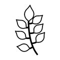 Leafs plant isolated icon
