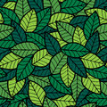 Leafs seamless pattern spring hand drawn no transparency and gradients used Royalty Free Stock Photos