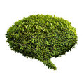 Leafy green speech bubble Stock Image