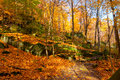 Leafy ledges rock and path blanketed by the leaves of autumn Stock Image