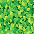 Leafy seamless background 1 Stock Image