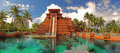 Leap of Faith Waterslide at Atlantis resort Bahamas Royalty Free Stock Photo