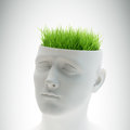 Learning and mental development concept grass growing out of a head Stock Images