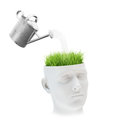 Learning and mental development concept grass growing out of a head Royalty Free Stock Image