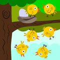 Learning to fly a cartoon illustration of baby birds trying but falling Royalty Free Stock Image