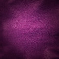 Leather background purple close up Stock Images