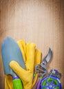 Leather gloves metal trowel sharp garden pruner soft wire tie on Royalty Free Stock Photo