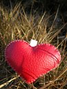Leather heart on the grass for valentine day Royalty Free Stock Photo