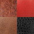 Leather it is a material Royalty Free Stock Image