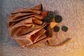 Leather pouch with ancient Roman coins Royalty Free Stock Photo