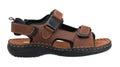 Leather sandal Royalty Free Stock Photo