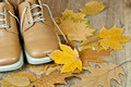 Leather shoes and yellow leaves Royalty Free Stock Photos