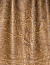 Leather skin textured Royalty Free Stock Photos