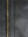 Leather with zipper Royalty Free Stock Photo