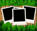 Leave of plant and photo frame on bamboo Stock Images