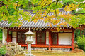 Leaves In Automn with Asian Traditional House Royalty Free Stock Photo