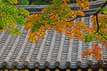 Leaves In Automn with Asian Traditional Roof Royalty Free Stock Photo