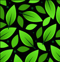 Leaves Background with dark background Stock Photo