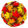Leaves changing color autumn fall leaf ball a or sphere of fallen in different colors to illustrate the change of season to or in Stock Photos