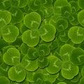 Leaves clover shamrock  seamless pattern Royalty Free Stock Photo