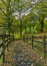 A small bridge covered in autunm leaves Royalty Free Stock Photo
