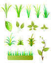 Leaves grass collection illustration design Stock Photos