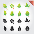 Leaves green design set elements This image is a vector illustration Royalty Free Stock Photo