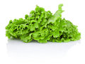 Leaves of green salad isolated on white background a Royalty Free Stock Photo