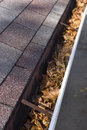 Leaves in House Gutter - Vertical View Royalty Free Stock Photo