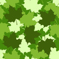Leaves maple background seamless pattern Stock Image