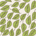 Leaves organic icon