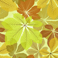 Leaves patterns chestnut floral seamless pattern Stock Photography