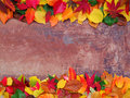Leaves and plaster colorful autumn on weathered grungy background Royalty Free Stock Photo