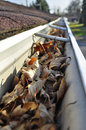Leaves in rain gutter. Stock Images