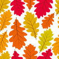Leaves seamless wallpaper background vector natural endless pat pattern autumn Stock Photography