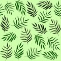 stock image of  Leaves pattern. Tropical, herbs background. Green grass texture